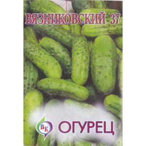 """Огурец """"Вязниковский 37"""""""