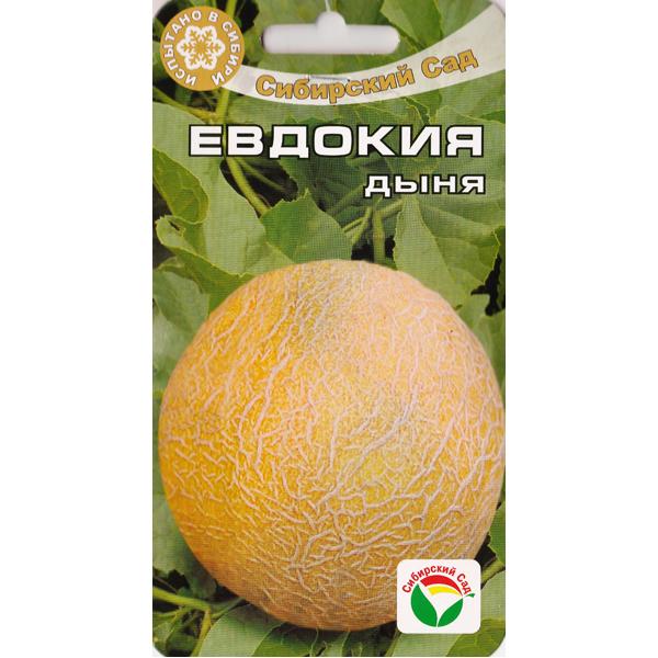 Дыня Евдокия