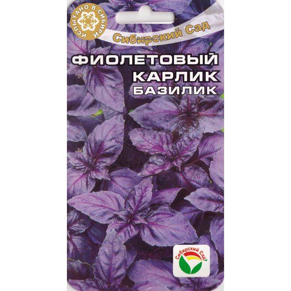 Базилик Фиолетовый карлик