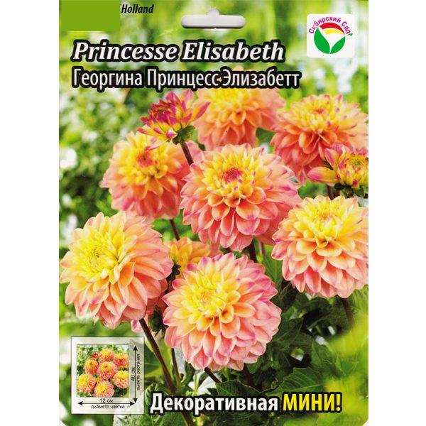 """Георгина декоративная """"Princesse Elisabeth""""(мини)"""
