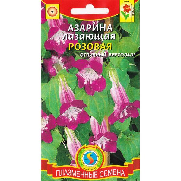"Азарина лазающая ""Розовая"""