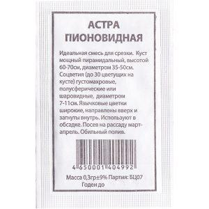 """Астра """"Пионовидная"""""""