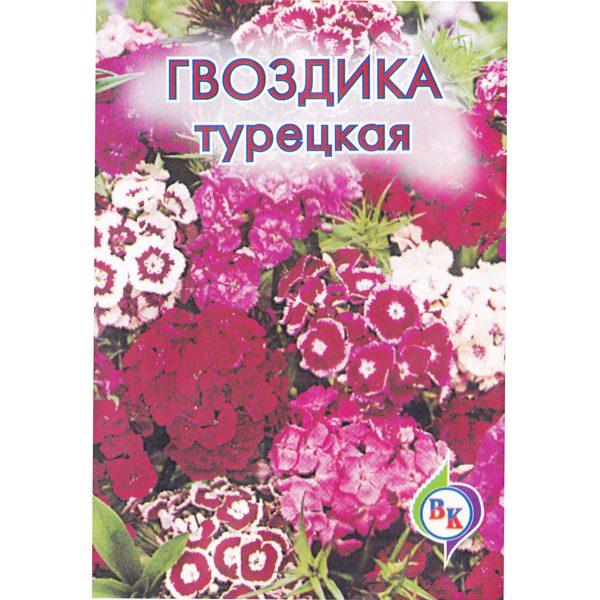 гвоздика-турецкая-розовое-очаровани