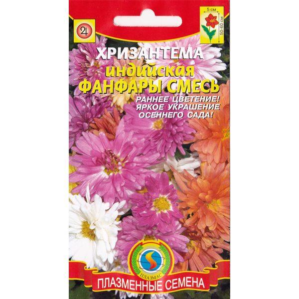 хризантема индийская фанфары смесь