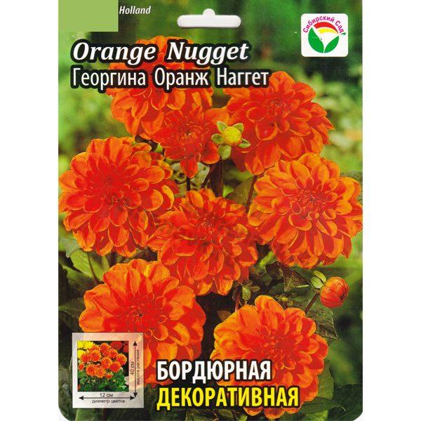 georgina-orange-nugget