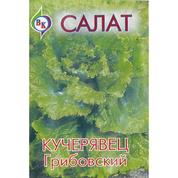 """Салат """"Кучерявец Грибовский"""""""