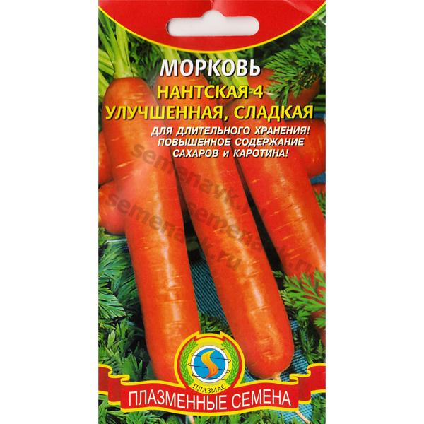 morkov-nantskaya-4-uluchshennaya-sladkaya