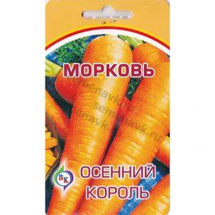 morkov-osennij-korol