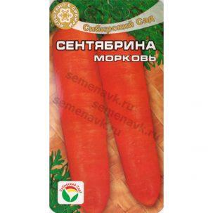 morkov-sentyabrina