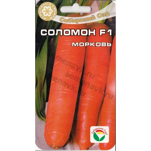morkov-solomon-f1