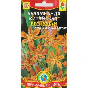Беламканда китайская Веснушки