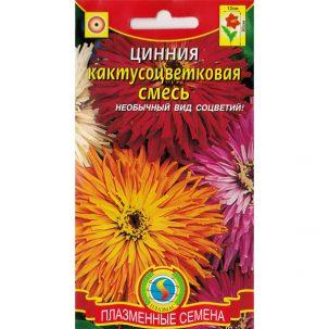 циния кактусоцветковая смесь