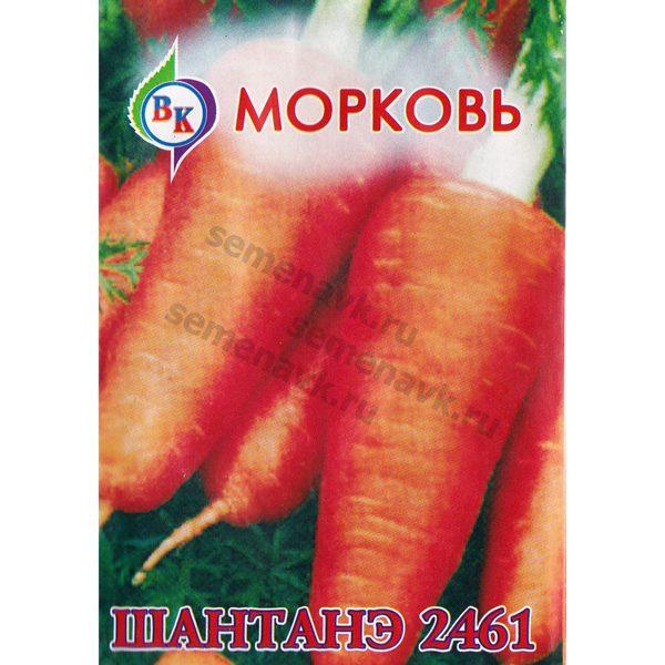 morkov-shantane-2461