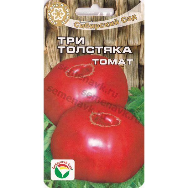 томат три толстяка