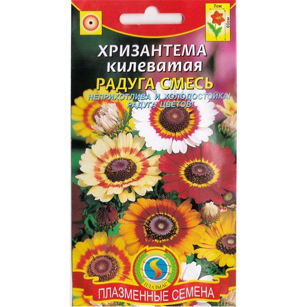 хризантема килеватая радуга смесь