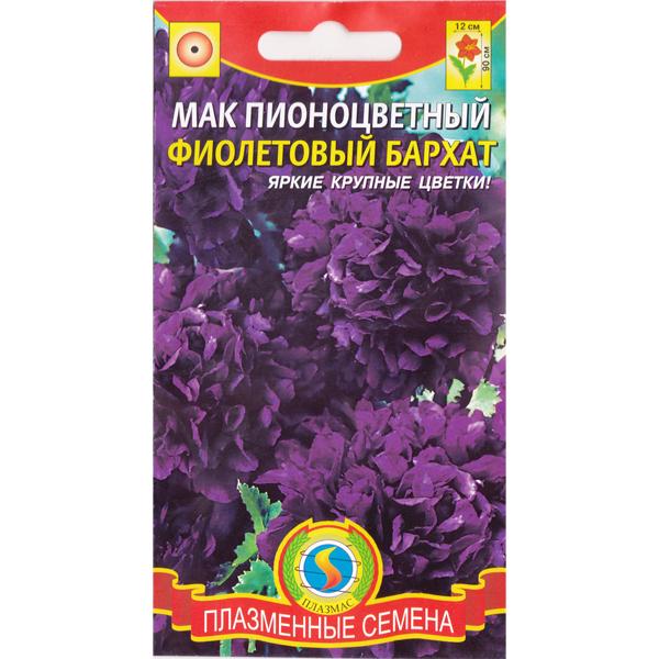 мак пионоцветный фиолетовый бархат
