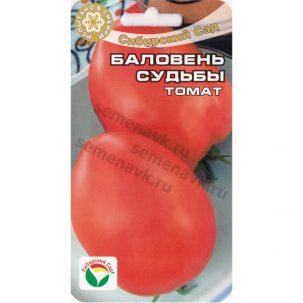 томат баловень судьбы