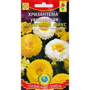 хризантема увенчанная солнечный микс