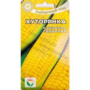 кукуруза хуторянка
