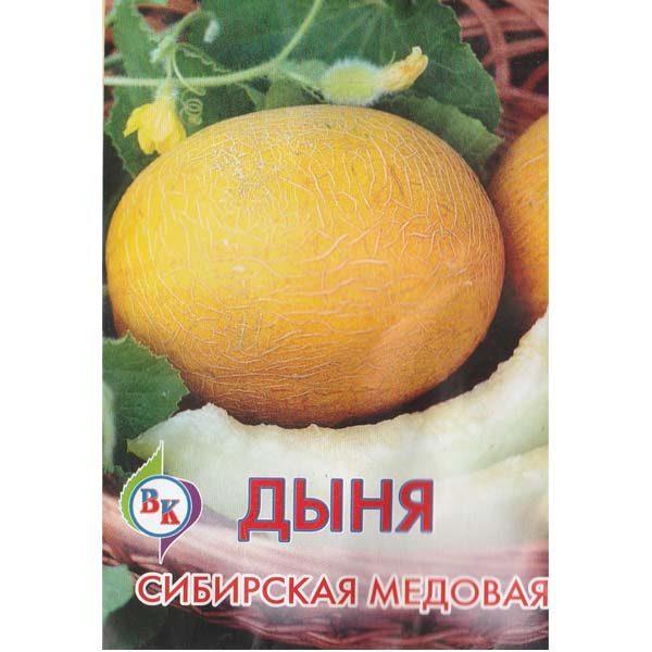 дыня сибирская медовая