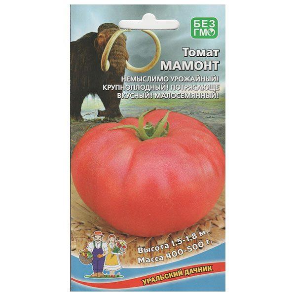 томат мамонт