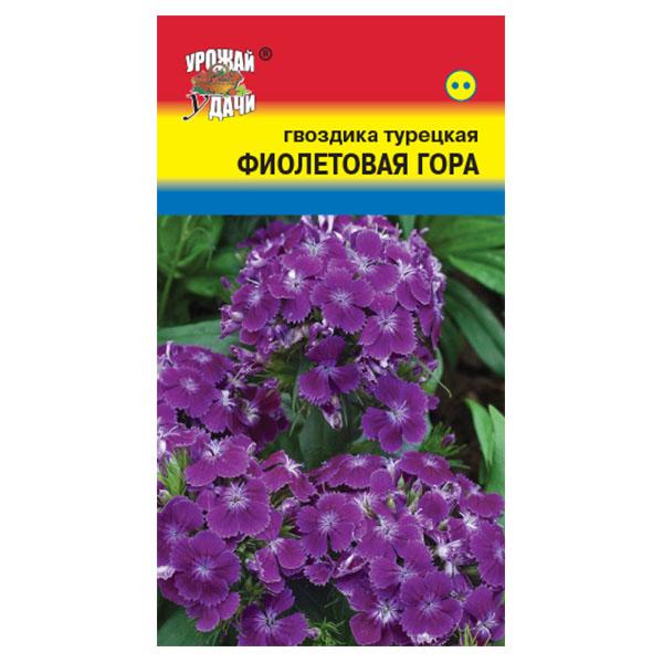 купить гвоздика турецкая фиолетовая гора