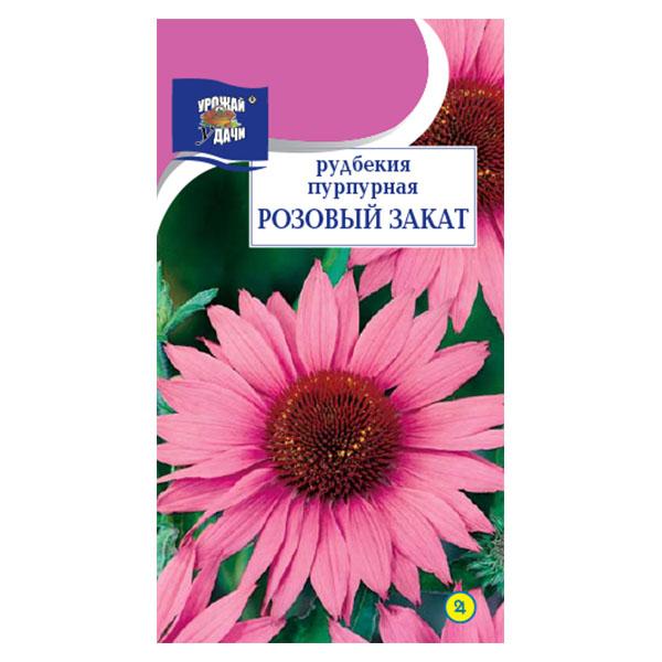 купить рудбекия пурпурная (эхинацея) розовый закат