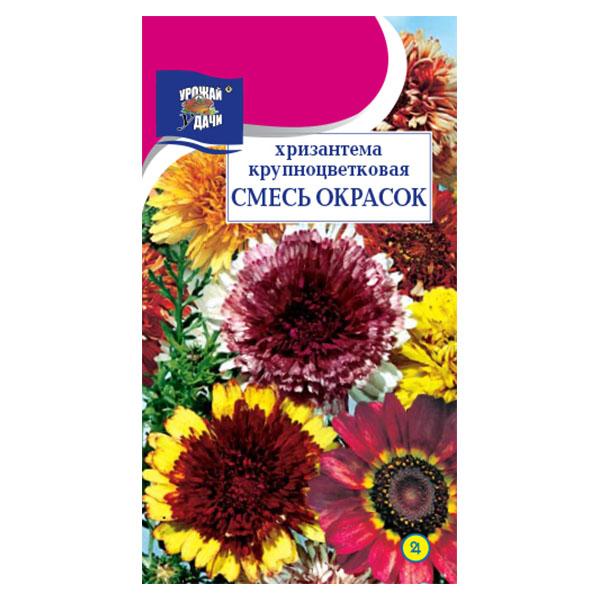 купить хризантема крупноцветковая смесь окрасок