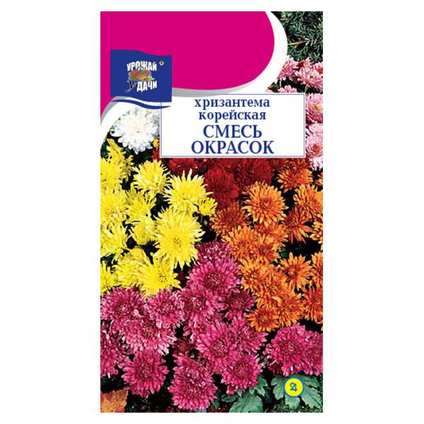 купить хризантема корейская смесь окрасок